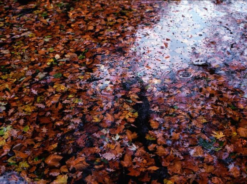 water_KirstenBecken_02.jpg