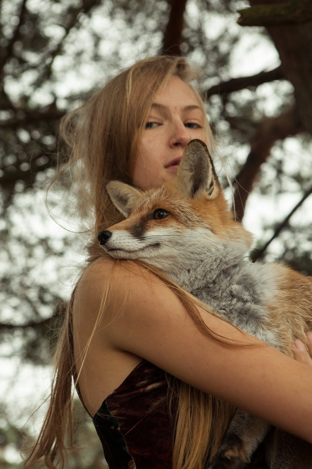 Kirsten Becken Foxy