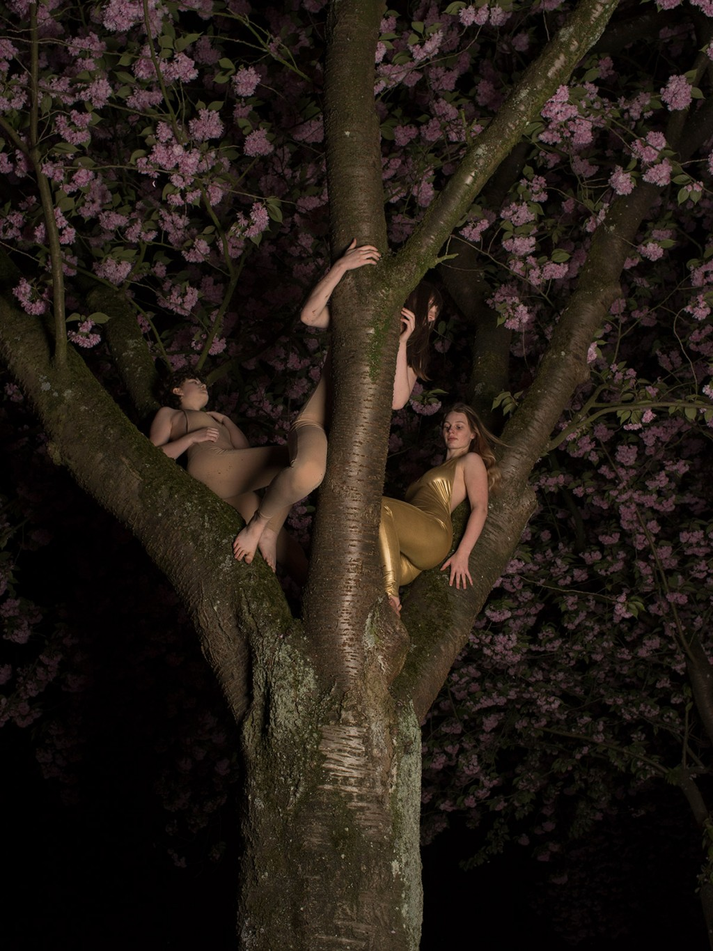 Kirsten Becken Girls in Trees